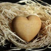 wood-wool-Fatherheart-France