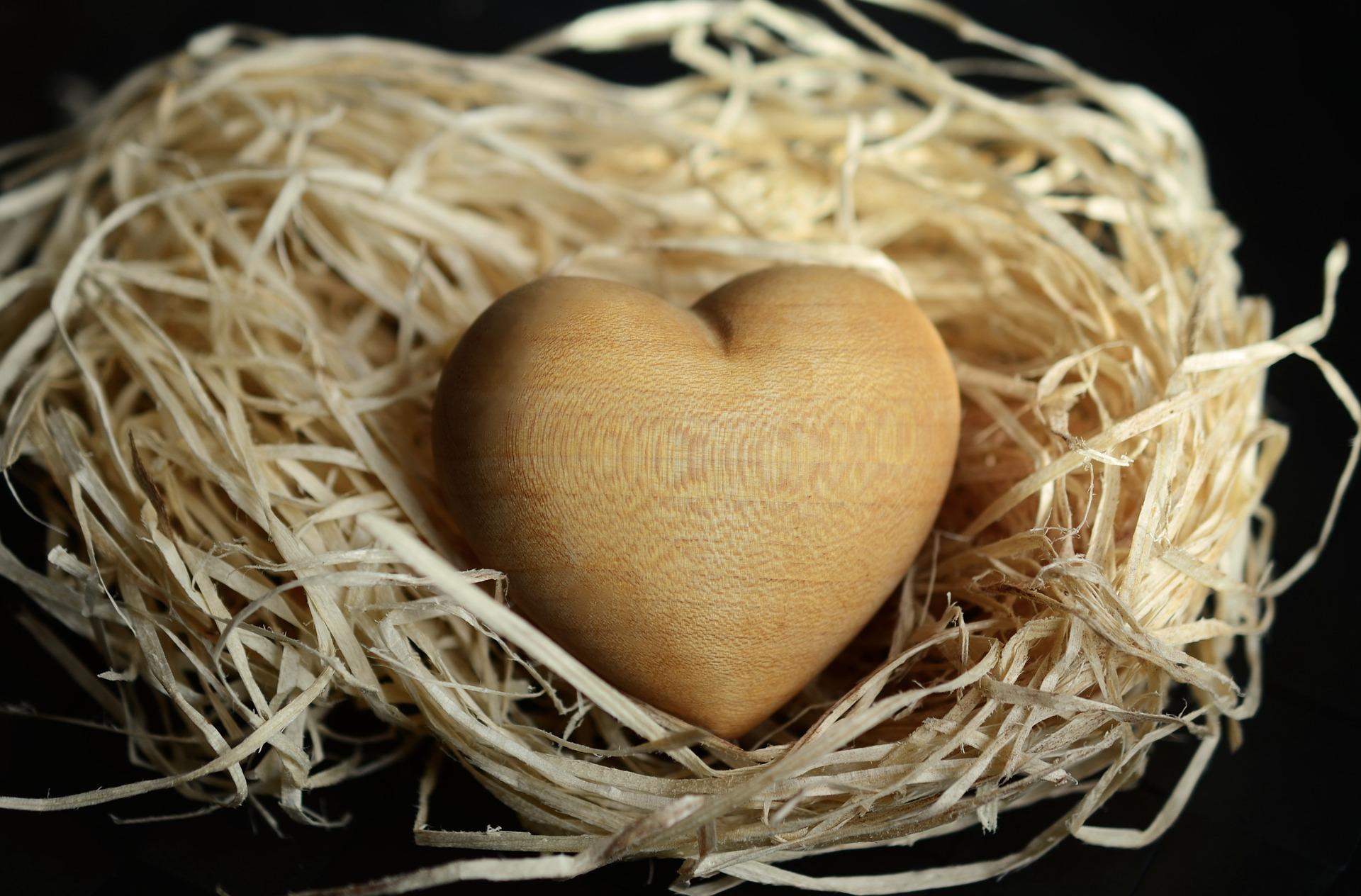 wood-wool-Fatherheart-France
