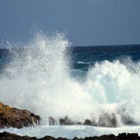 wave-Fatherheart-France